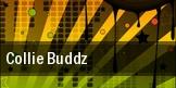 Collie Buddz San Luis Obispo tickets