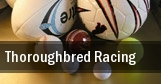 Thoroughbred Racing tickets