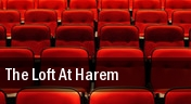 The Loft at Harem tickets