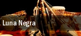 Luna Negra The Ridgefield Playhouse tickets