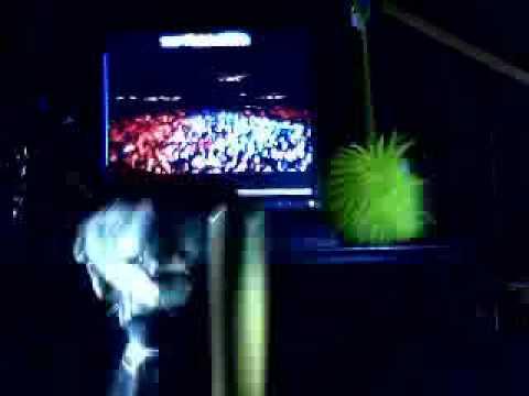 Jay-Z - Live at Bonnaroo 2010! (P. 1) - Big Pimpin` & Hard Knock Life. RATA Daily!