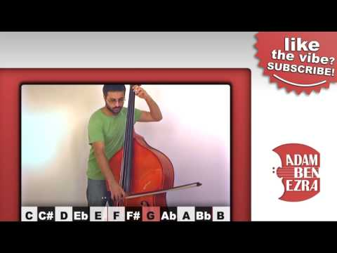 The YouTube Upright Bass | Interactive Video!