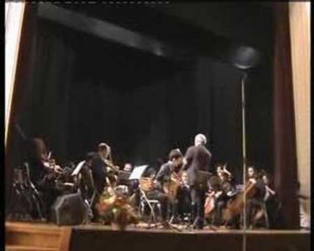 Antonio Vivaldi - Guitar Concerto in D Major RV 93 2. Mvt Largo - Soloist: Tolgahan Çoğulu