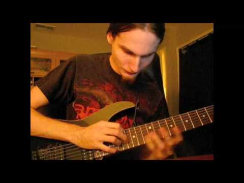 Animals As Leaders - CAFO tapping lick
