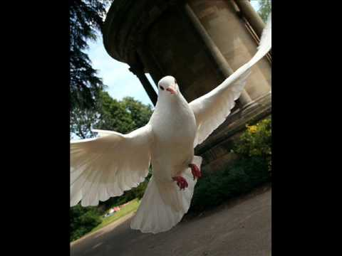 """Respighi - Gli Uccelli (""""The Birds"""") - (1/2)"""
