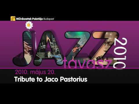 Jazztavasz 2010 - 2010.05.17., 20., 22., m�pa programaj�nl�