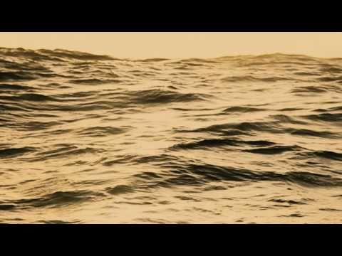Ben Howard - Old Pine Official