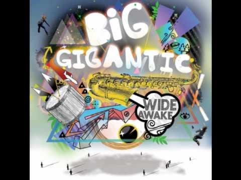 Big Gigantic - Polarize