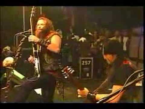 Black Label Society - 13 years of grief