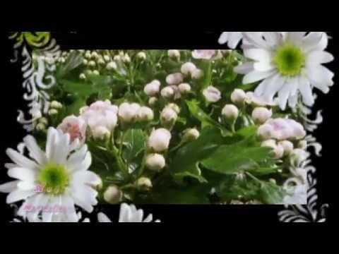 Ach te kwiaty