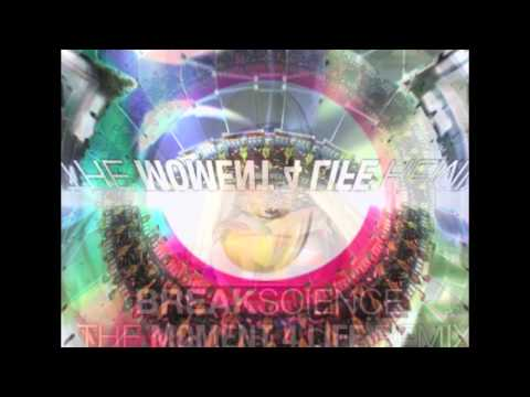 Break Science - Moment 4 Life Remix