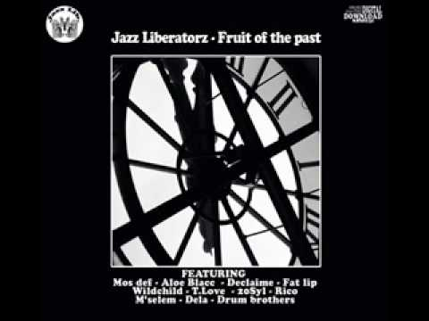 jazz liberatorz - force be with you (drum brothers remix)