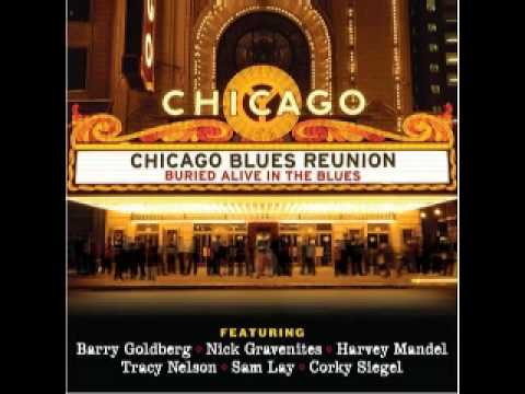 Chicago Blues Reunion - GM Boogie