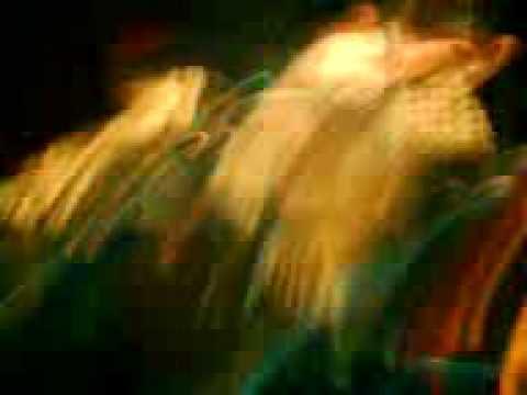 Flogging Molly zagreb 14.06. - Tobacco Island