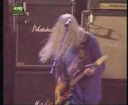 Dinosaur Jr -Feel the Pain