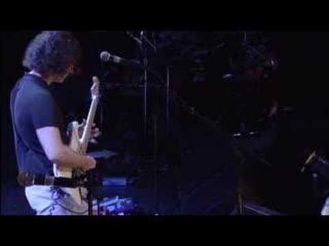Dweezil Zappa `Black Napkins`