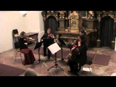 Nikolaus Schapfl - Streichquartett N�2