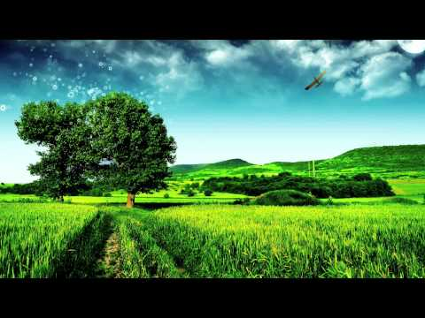 Best Trance Songs - January 2011 (HD)