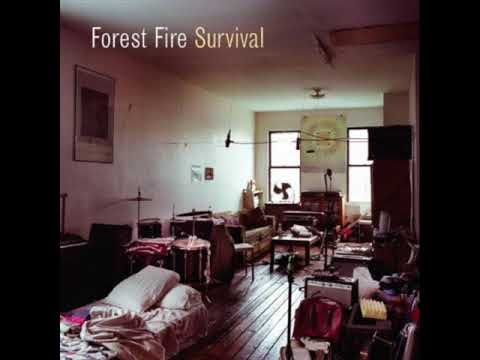 Forest Fire - Fortune Teller