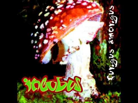 Incubus - Psychosilocybin