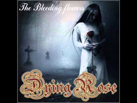 Dying Rose - Damned God
