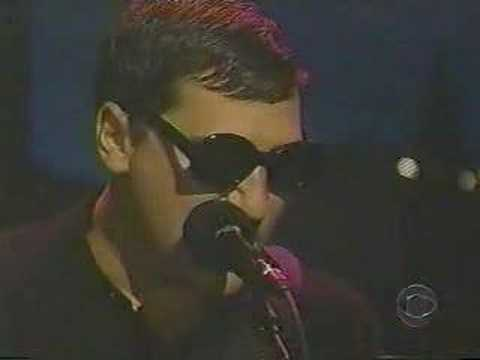 HAVING A PARTY greg dulli