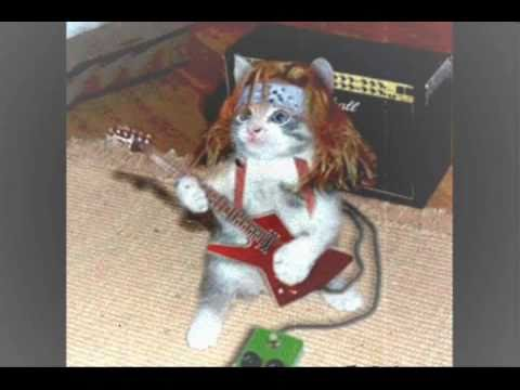 cat guitar vs cat piano (hardcor music) in fl studio 10 !!!