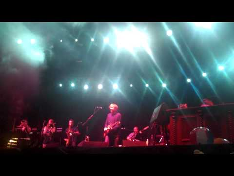 Hangout Festival 2010 - Trey Anastasio - First Tube - Grand Finale
