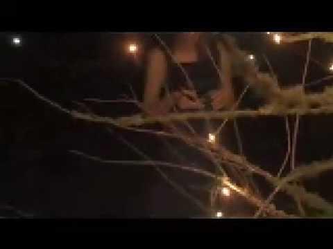 Sleepy Tigers - Unofficial Music Video