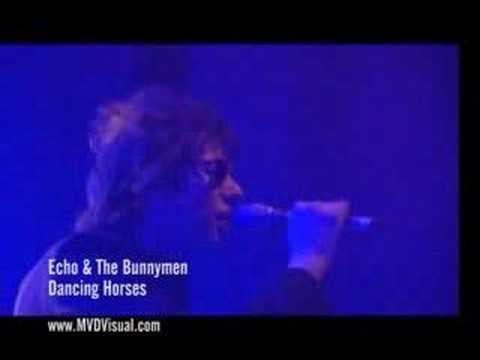 Echo & The Bunnymen - Dancing Horses
