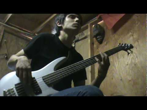 Irukandji (Bass Cover)