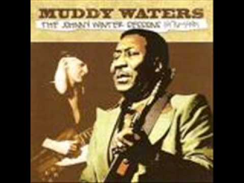 Muddy Waters & Johnny Winter / Cross Eyed Cat