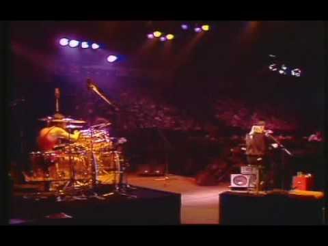 Johnny Winter - Bony Moronie