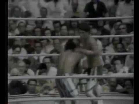 Boxing Tribute -We are warriors