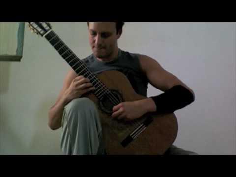 Tariq Harb: Beethoven`s Violin Concerto transcribed for Guitar!