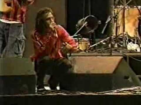 Rage Against the Machine - Killing in the Name (Reading Festival 96)