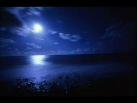 kokia MoonLight Shadow