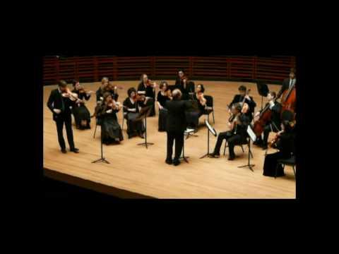 Telemann viola concerto 1-2