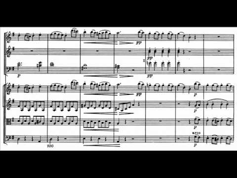 "Haydn: ""Military"" Symphony No. 100 in G major - Movement 1 