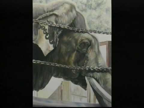 When Elephants Cry © 2007 By: Mayuka Thais
