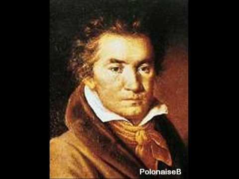 Ludwig van Beethoven Symphony No. 7 - Allegro con Brio