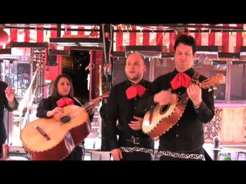 El Bronx `Cell Mates` Acoustic Video Reversion