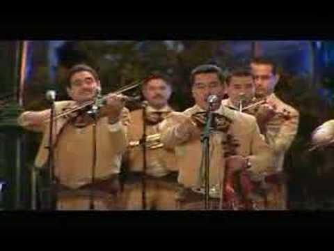 Mariachi Los Camperos - Los Pollitos