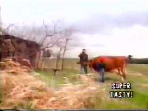 fIREHOSE - Walking The Cow video w/Mike Watt intro