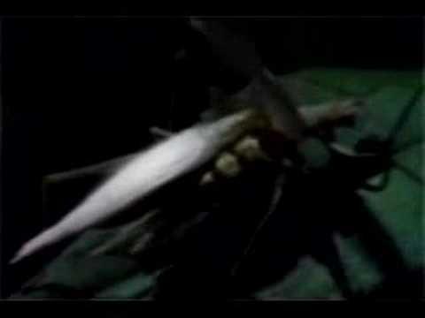 Natalie Merchant-My Skin