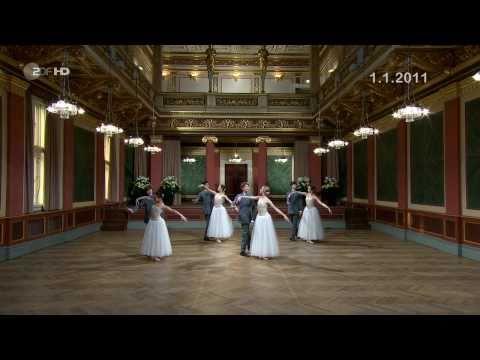 An der sch�nen blauen Donau - Neujahrskonzert / New Year`s Concert 2011 Vienna HD