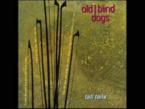 Old Blind Dogs -- Pills of White Mercury