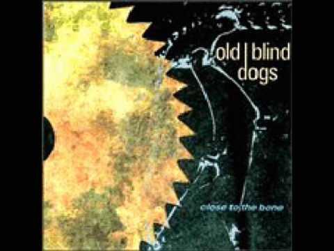 Old Blind Dogs -- Jean O` Bethelnie(Glenlogie)