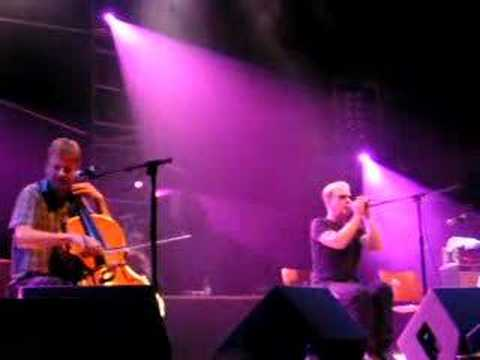 oysterband - fiddle or a gun