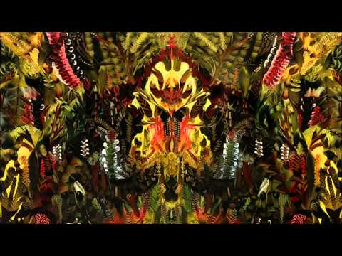 Shpongle - The God Particle (feat. Benji) [HD]